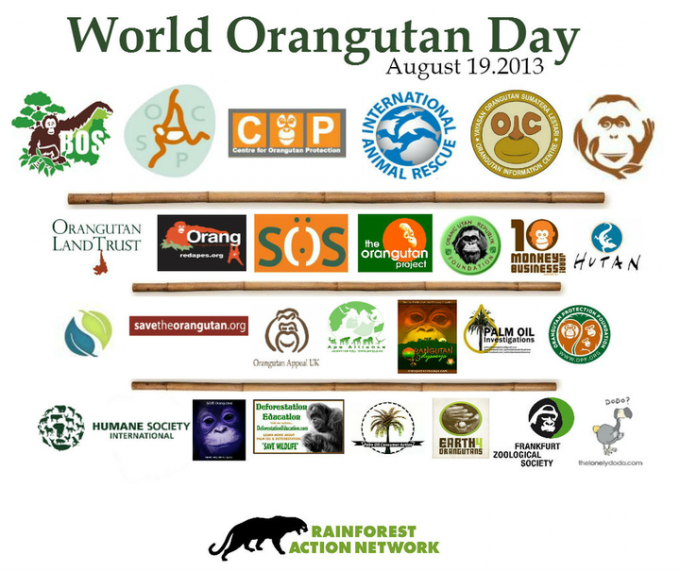 World Orangutan Day!