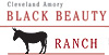 Black Beauty Ranch