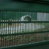 ou cage4