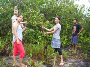 volunteers-in-kalimantan