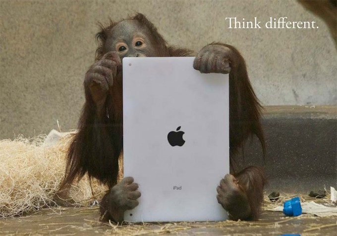 OrangutanOutreach-Apps4Apes-1028x720