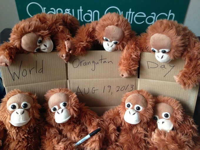 Orangutan Outreach Interns Hard at Work!