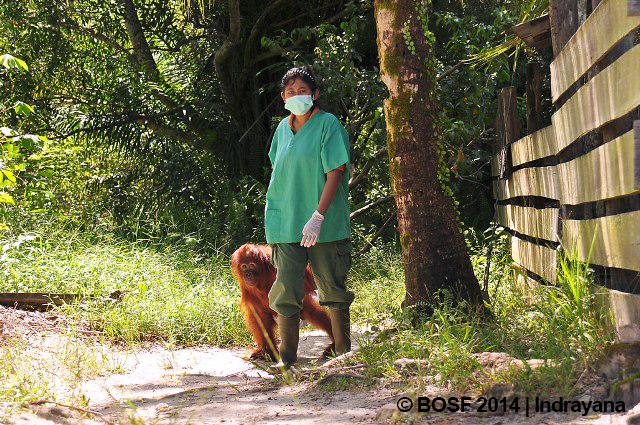 2-Adil-keluar-dari-nursery-group-area-dituntun-oleh-assisten-medis-Setyati