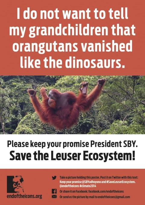 Leuser-poster-orangutan