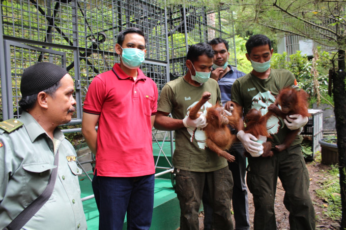IMG_1974 BBKSDA Somad Police Cpt Bayu and the 3 orangutans