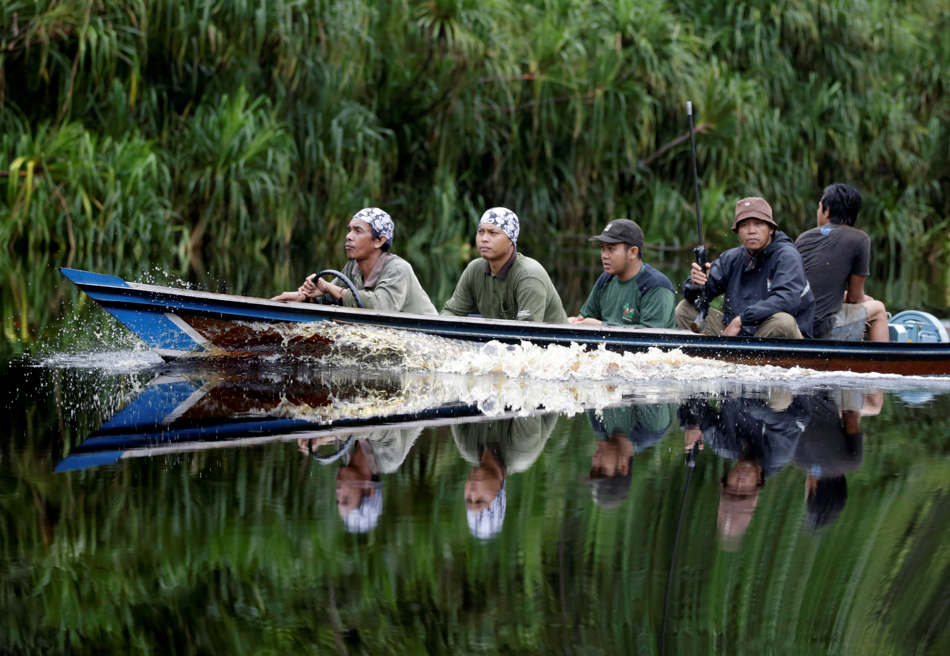 In this Jan. 6, 2016, photo, conservationists from the Borneo Orangutan Survival Foundation sit on a boat as they search for orangutans during a rescue and release operation in a swath of jungle in Sungai Mangkutub, Central Kalimantan, Indonesia. A team of foresters, veterinarians and technicians were deployed to rescue orangutans which lost their habitat to the forest fires last year and relocate them to a new location. (AP Photo/Dita Alangkara)