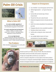 Palm Oil Crisis